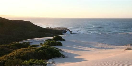 Hope springs eternal at De Hoop