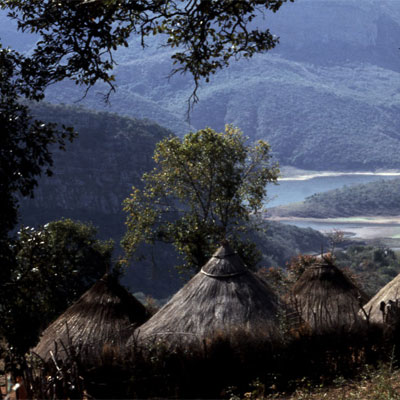 Picture of Venda Sacred Forest Walk