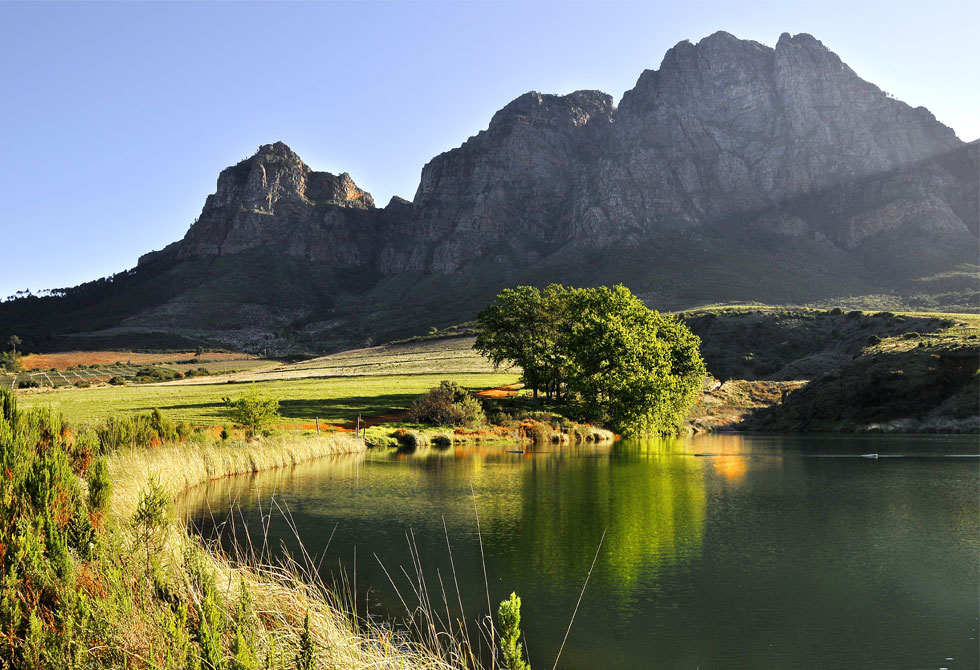 Another beautiful picture of Boschendal