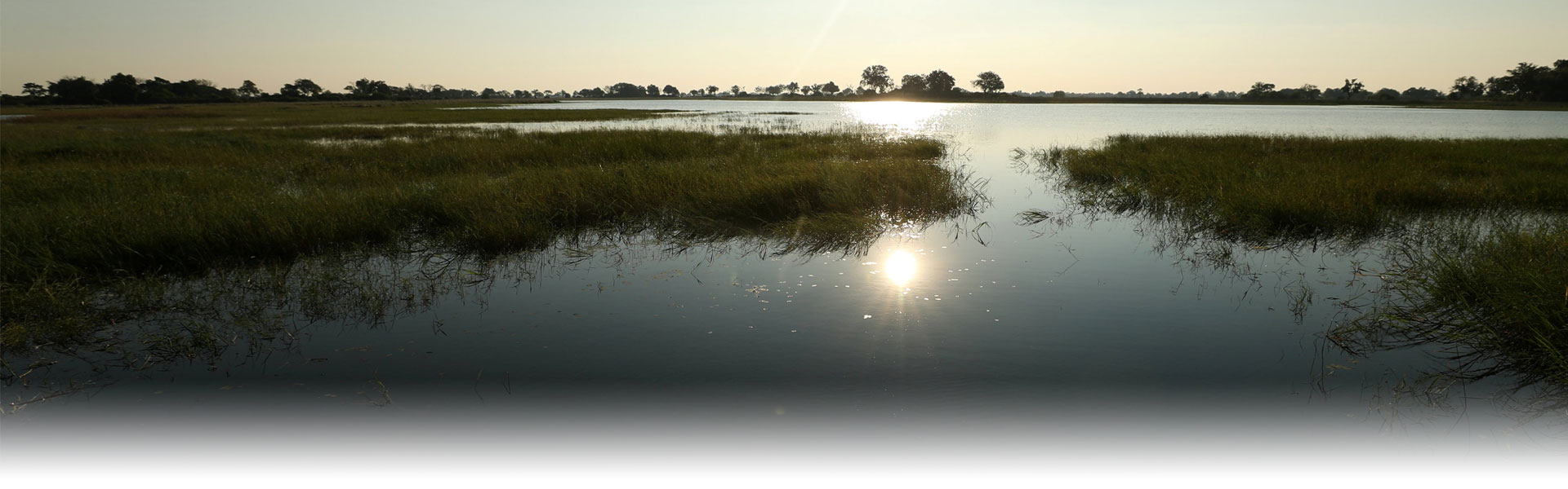 A beautiful picture of the Okavango Delta Eco Adventure tour
