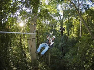Treetop Canopy Tours